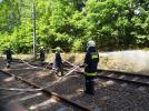 Bahndammbrand_26